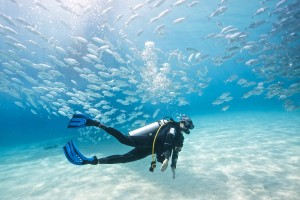 Thanksgiving 7 reasons your a SCUBA Diver