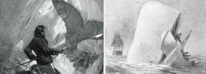 Was Moby Dick a real whale?