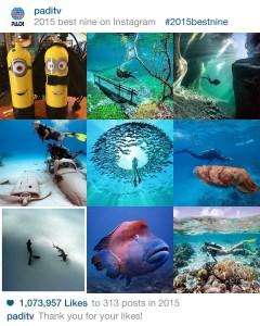 Top Diving Photos of 2015