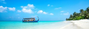 From Thilas to Kandus: Scuba Diving in the Maldives