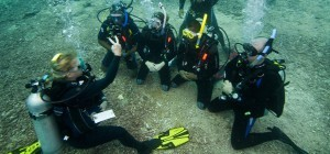 7 Reasons Why Your Next Family Holiday Should Be a Scuba Diving Holiday